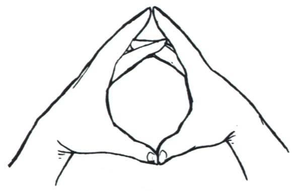 http://www.magitech.com/runes/h04os2.jpg